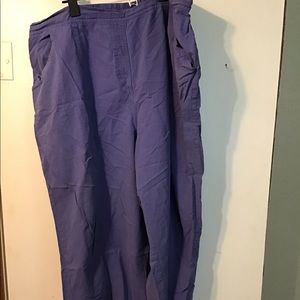 20W Capri Periwinkle Pants Plus